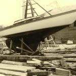 Umbau-Kolibri-II